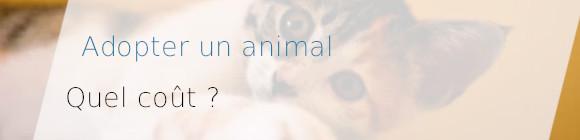 adopter animal coût