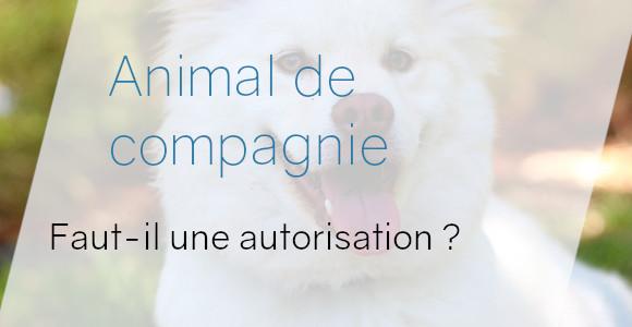 animal autorisation